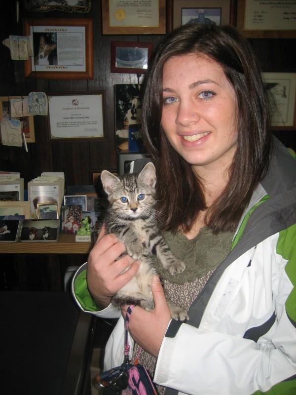 Sophie kitten Kitten Sophie